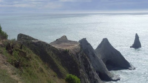 Cape Kidnappers Gannet Colony is said to play host to 20,000 gannets.