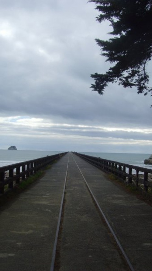 The wharf at Tolaga Bay was once a thriving bustling pier, fishing boats, cruise ships and other vessels regularly docked at the bay. You can still see the railway tracks leading out into the bay.